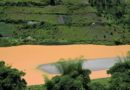 Government, partners re-commit to protect Nyabarongo river catchments