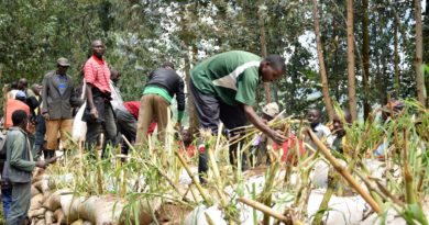 Long-term solutions to avert flooding from Sebeya River