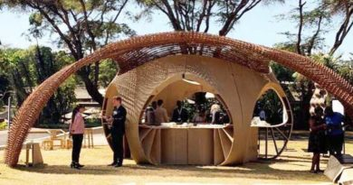 Smart housing prototype shows promise in rapidly urbanizing Africa