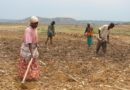 225,000 Kayonza residents to benefit from $80 million agriculture drought resilient scheme