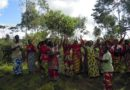 £249,613 to empower over 1,000 vulnerable genocide widows